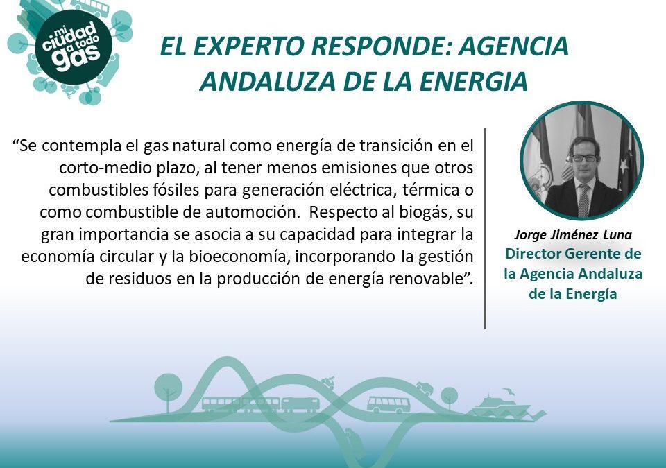 AGENCIA ANDALUZA DE LA ENERGIA RESPONDE:  Jorge Jiménez Luna, Director Gerente de la Agencia Andaluza de la Energía
