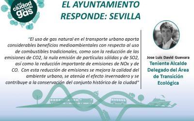 EL AYUNTAMIENTO RESPONDE: Jose Luis David Guevara , Teniente de Alcalde Delegado del Área de Transición Ecológica del Ayuntamiento de Sevilla