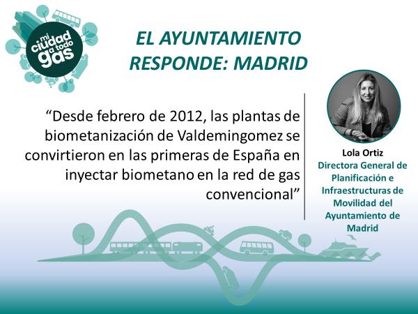 EL AYUNTAMIENTO RESPONDE: Lola Ortiz, Directora General de Planificación e Infraestructuras de Movilidad del Ayuntamiento de Madrid