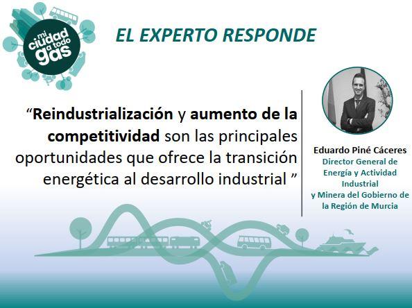 EL GOBIERNO DE LA REGIÓN DE MURCIA RESPONDE: Eduardo Piné Cáceres, director general de Energía y Actividad Industrial y Minera